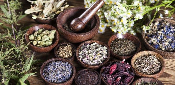 Alternative Medicine Health