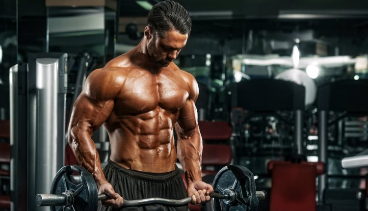 Bodybuilding Workout For Mass Muscle