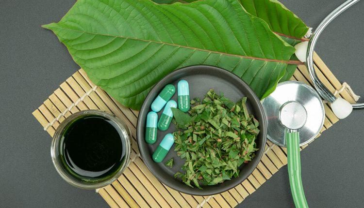Kratom herb