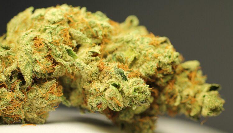 Buy Weed00